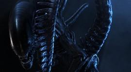 Aliens Wallpaper For IPhone