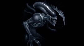Aliens Wallpaper For PC