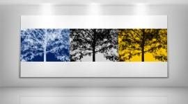 Art Gallery Wallpaper For Desktop