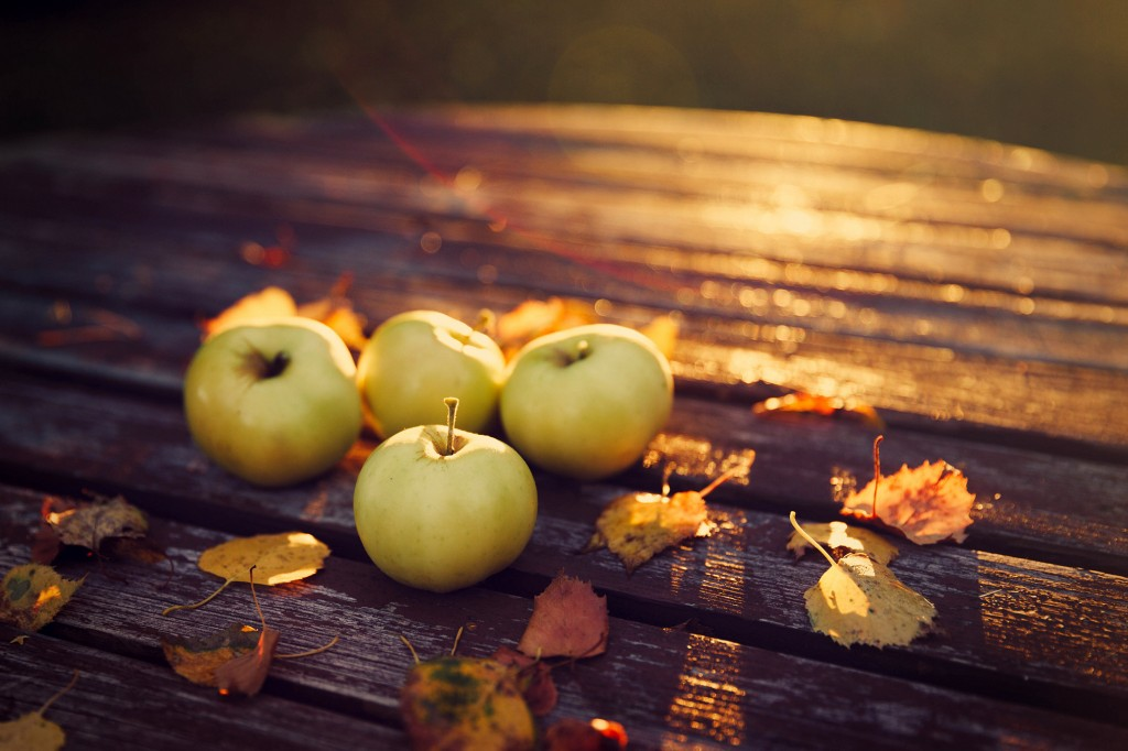 Autumn Apples wallpapers HD