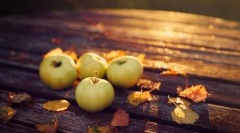 Autumn Apples Best Wallpaper