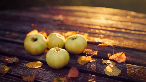 Autumn Apples wallpapers high quality