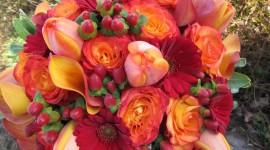 Autumn Bouquets Wallpaper