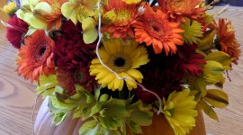 Autumn Bouquets Wallpaper For Android#1