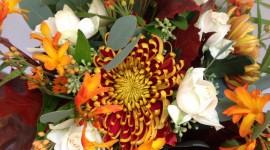 Autumn Bouquets Wallpaper For Mobile
