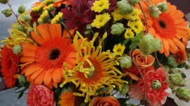 Autumn Bouquets Wallpaper Full HD