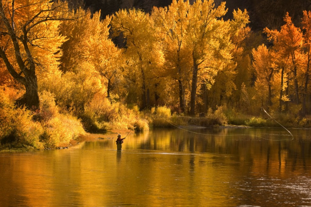 Autumn Fishing wallpapers HD
