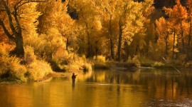 Autumn Fishing Best Wallpaper