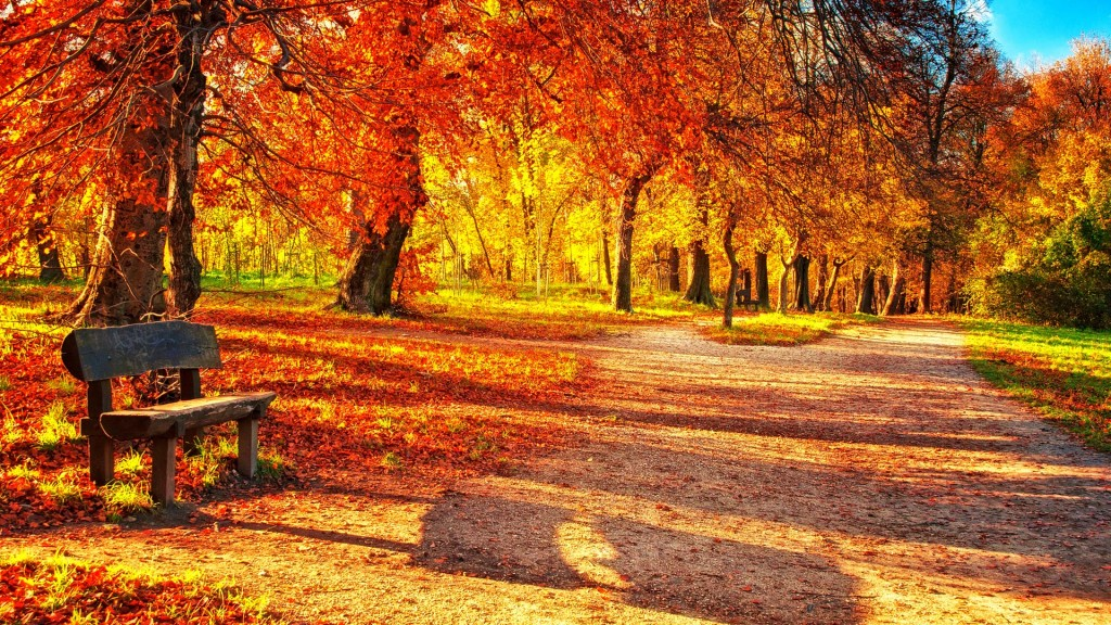 Autumn Park wallpapers HD