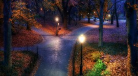 Autumn Park Wallpaper Download