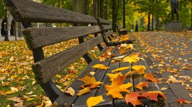Autumn Park Wallpaper Gallery