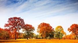 Autumn Sky Photo Download