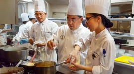 Culinary Program Wallpaper Download Free