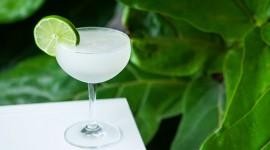 Daiquiri Cocktail Photo Download