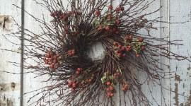 Dried Twigs Desktop Wallpaper For PC