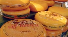 Dutch Cheese Best Wallpaper