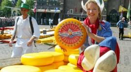 Dutch Cheese Desktop Wallpaper