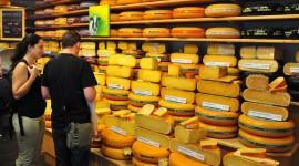 Dutch Cheese Wallpaper Download Free