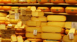 Dutch Cheese Wallpaper For IPhone