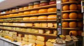 Dutch Cheese Wallpaper HQ
