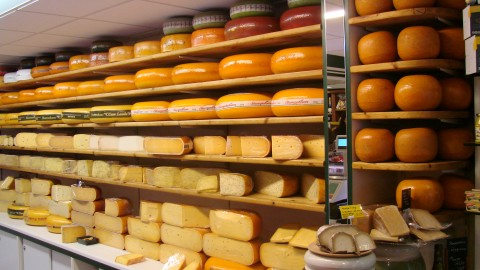 Dutch Cheese wallpapers high quality