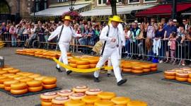 Dutch Cheese Wallpaper High Definition