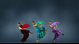 Flamenco Wallpaper 1080p