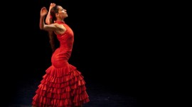 Flamenco Wallpaper For Desktop