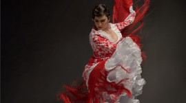 Flamenco Wallpaper For IPhone 6 Download