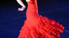 Flamenco Wallpaper For IPhone Download
