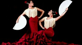 Flamenco Wallpaper Full HD