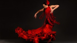 Flamenco Wallpaper Gallery