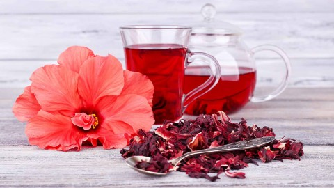 Hibiscus Tea wallpapers high quality