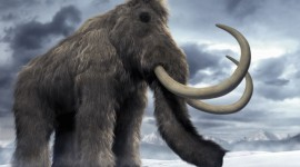 Mammoth Desktop Wallpaper For PC