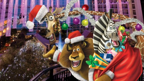 Merry Madagascar wallpapers high quality