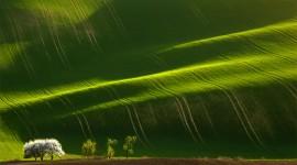 Moravia Photo#1