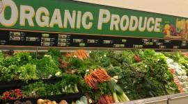 Organic Food High Quality Wallpaper