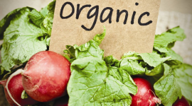 Organic Food Wallpaper For IPhone