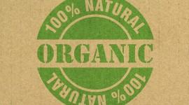 Organic Food Wallpaper HQ