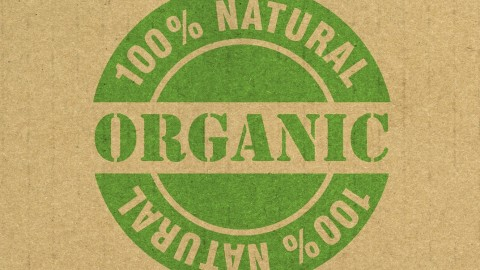 Organic Food wallpapers high quality