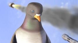 Pigeon Impossible Best Wallpaper