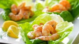 Salad With Shrimp Best Wallpaper