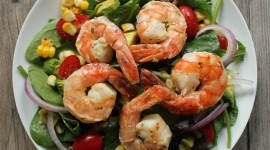 Salad With Shrimp Wallpaper For Mobile
