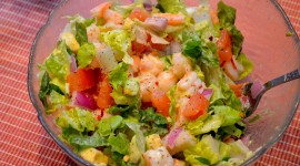 Salad With Shrimp Wallpaper For PC