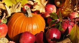 Autumn Harvest Best Wallpaper