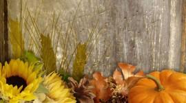 Autumn Harvest Wallpaper 1080p