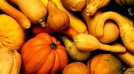 Autumn Harvest Wallpaper Full HD
