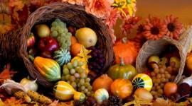 Autumn Harvest Wallpaper Full HD#1