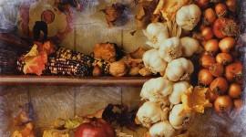 Autumn Harvest Wallpaper HQ