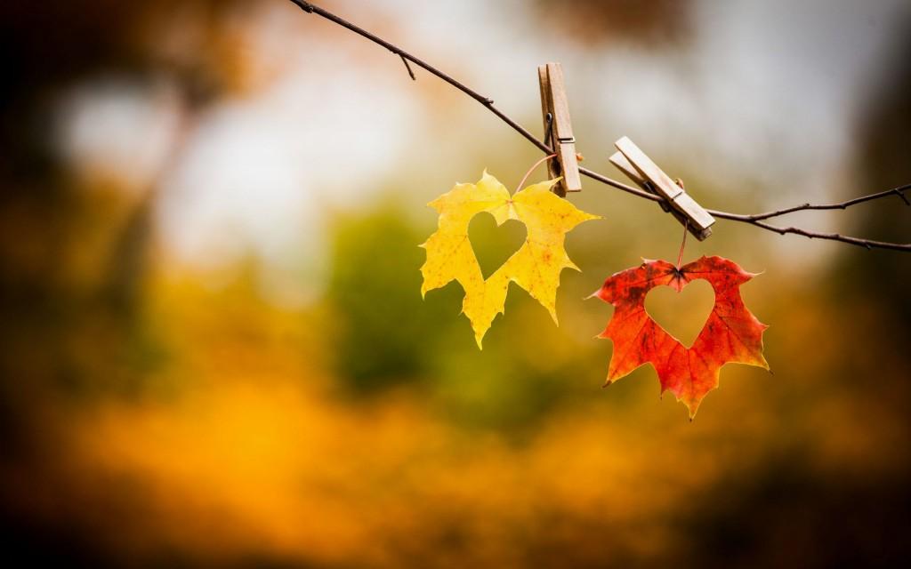 Autumn Heart wallpapers HD